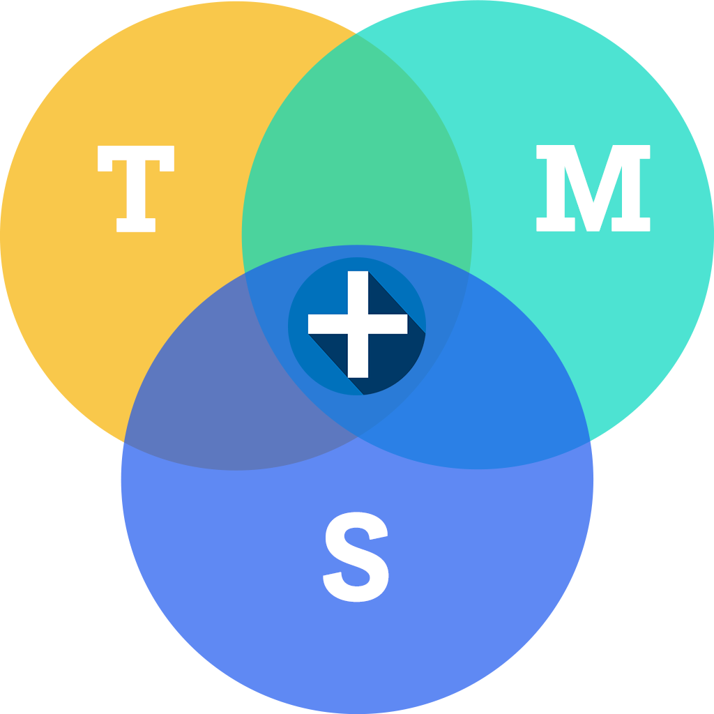 TMS+ Values
